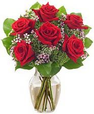 Kız arkadaşıma hediye 6 kırmızı gül  Çankırı çiçek yolla