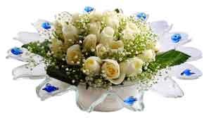 Çankırı internetten çiçek satışı  11 adet Beyaz güller özel cam tanzim