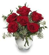 Vazo içerisinde 5 adet kırmızı gül  Çankırı online çiçekçi , çiçek siparişi