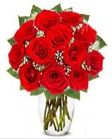 12 adet vazoda kıpkırmızı gül  Çankırı çiçek satışı
