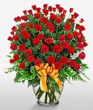 Görsel vazo içerisinde 101 adet gül  Çankırı çiçek satışı