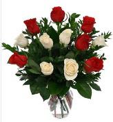 Vazo içerisinde 6 kırmızı 6 beyaz gül  Çankırı yurtiçi ve yurtdışı çiçek siparişi