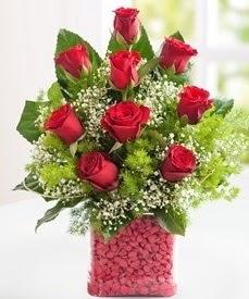 Cam içerisinde 9 adet kırmızı gül  Çankırı İnternetten çiçek siparişi