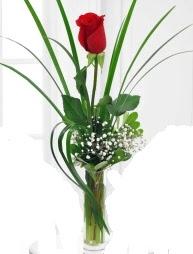 Cam içerisinde 1 kırmızı gül  Çankırı anneler günü çiçek yolla