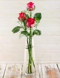 Cam içerisinde 3 kırmızı gül  Çankırı çiçek mağazası , çiçekçi adresleri