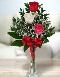 Camda 2 kırmızı 1 beyaz gül  Çankırı güvenli kaliteli hızlı çiçek