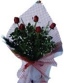 Çankırı online çiçekçi , çiçek siparişi  5 adet kirmizi güllerden buket