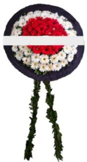 mozele çiçeği  Çankırı çiçek siparişi sitesi