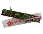 Çankırı yurtiçi ve yurtdışı çiçek siparişi  3 adet gül.kutu yaldizlidir.