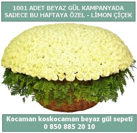 1001 adet beyaz gül sepeti özel kampanyada  Çankırı anneler günü çiçek yolla