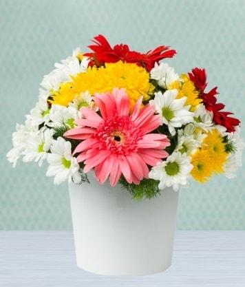Seramik Vazoda Gelbera ve Papatya  Çankırı çiçek online çiçek siparişi