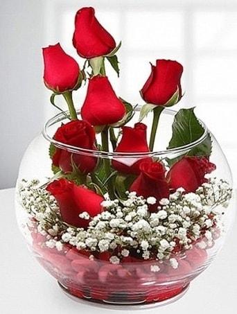 Kırmızı Mutluluk fanusta 9 kırmızı gül  Çankırı çiçek yolla , çiçek gönder , çiçekçi