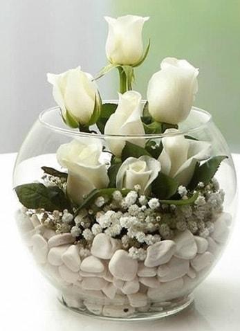 Beyaz Mutluluk 9 beyaz gül fanusta  Çankırı çiçek yolla , çiçek gönder , çiçekçi