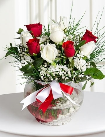 Aşk Küresi  5 beyaz 5 kırmızı gül fanusta  Çankırı İnternetten çiçek siparişi