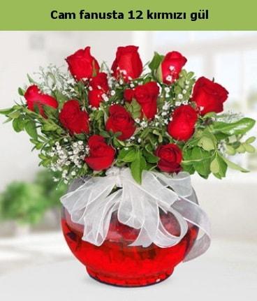 Cam içerisinde 12 adet kırmızı gül  Çankırı İnternetten çiçek siparişi