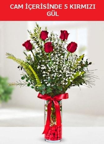Cam içerisinde 5 adet kırmızı gül  Çankırı çiçek yolla , çiçek gönder , çiçekçi