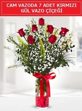 Cam vazoda 7 adet kırmızı gül çiçeği  Çankırı anneler günü çiçek yolla