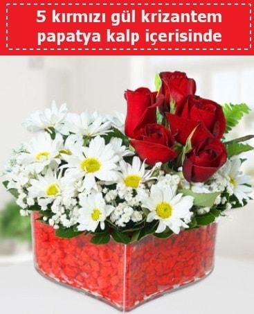 mika kalp içerisinde 5 kırmızı gül papatya  Çankırı çiçek online çiçek siparişi