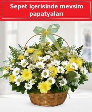 Sepet içerisinde mevsim papatyaları  Çankırı güvenli kaliteli hızlı çiçek