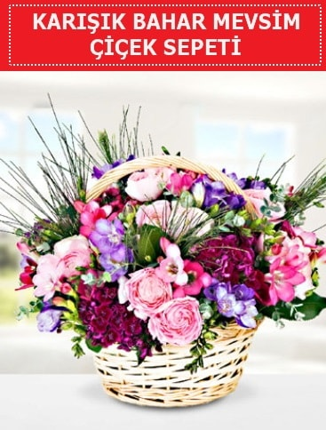 Karışık mevsim bahar çiçekleri  Çankırı güvenli kaliteli hızlı çiçek